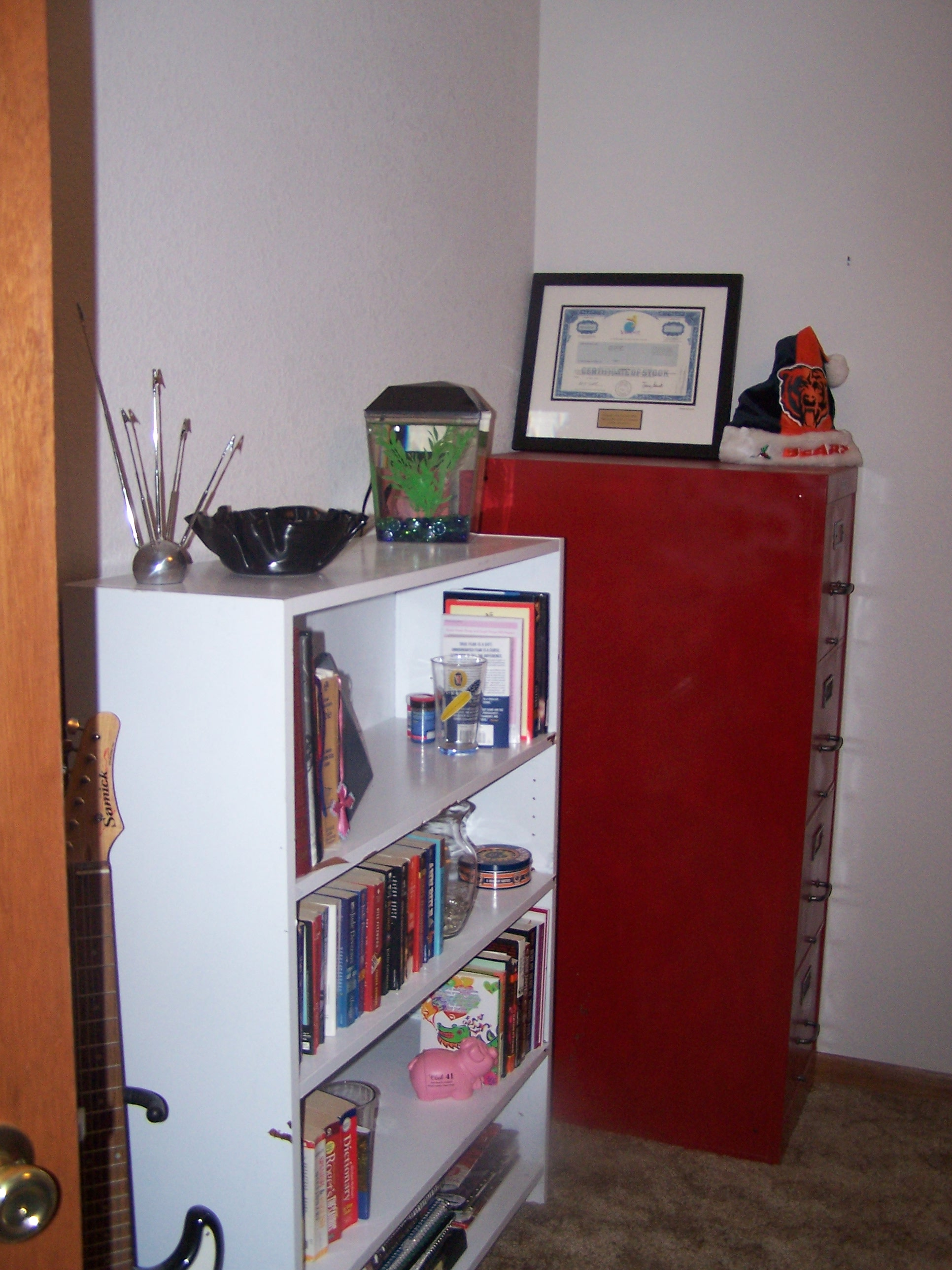 A close up of the bookshelves and our fish Van Halen.