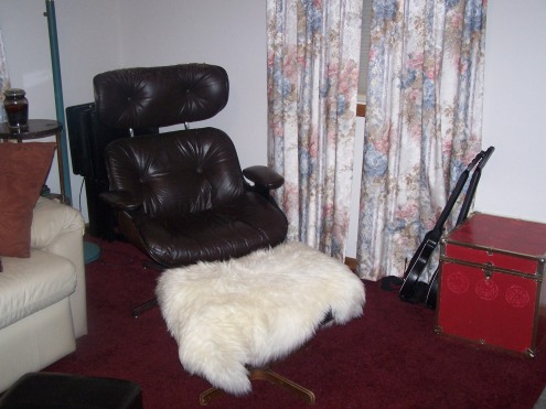 Next to the couch is my pride and joy!  My Eames era lounge chair!