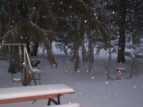 You can see the snow still falling down.