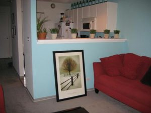//www.apartmenttherapy.com/chicago/small-cool-2007-entries/20-renatas-river-east-convertible-022196