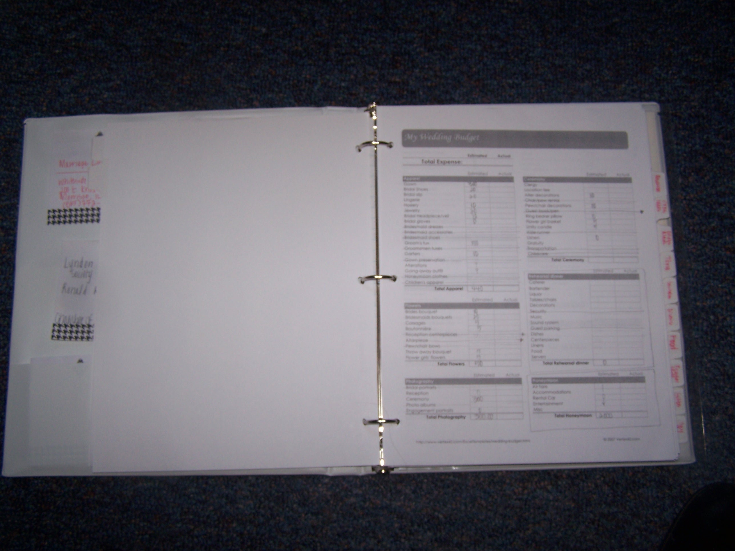 The inside of the planner.  This is a budget page.  You can see the tabs as well as some post-it notes.